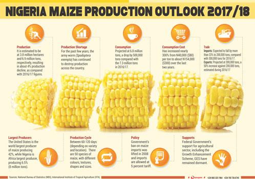 Infographics Report Element